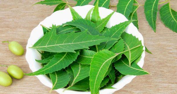 Ayurvedic Natural Remedies for Wrinkles free Fair Skin