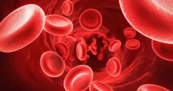 Vitamins & Food to increase Hemoglobin level in Blood Quickly