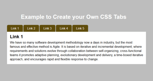 Easily Customizable pure CSS tab Control Example