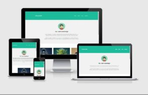 AMP It Up: Top 10 Mobile Responsive WordPress Themes