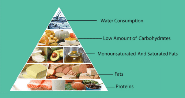 The Modified Ketogenic Diet to Enhance Weight Loss