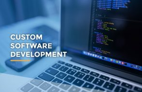 Growing Importance of Custom Software Development Strategy