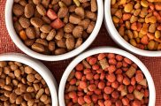 Handpick Offers on Pet Food and Supplies Exclusively on Souq